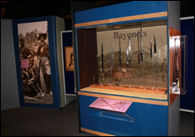 Blades Exhibit - View 5